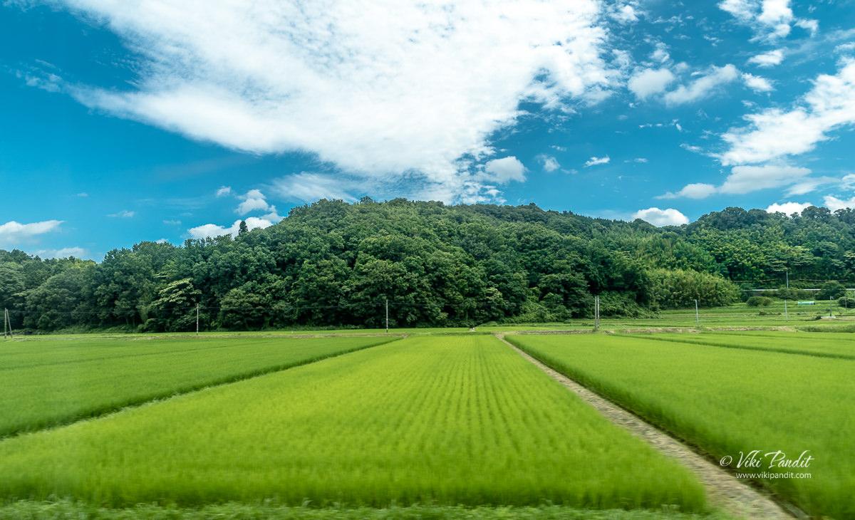 Shimane countryside