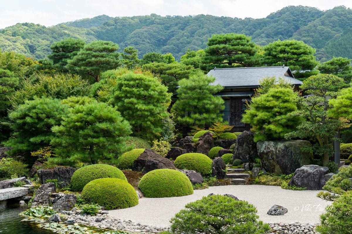 Adachi Ikeniwa Garden