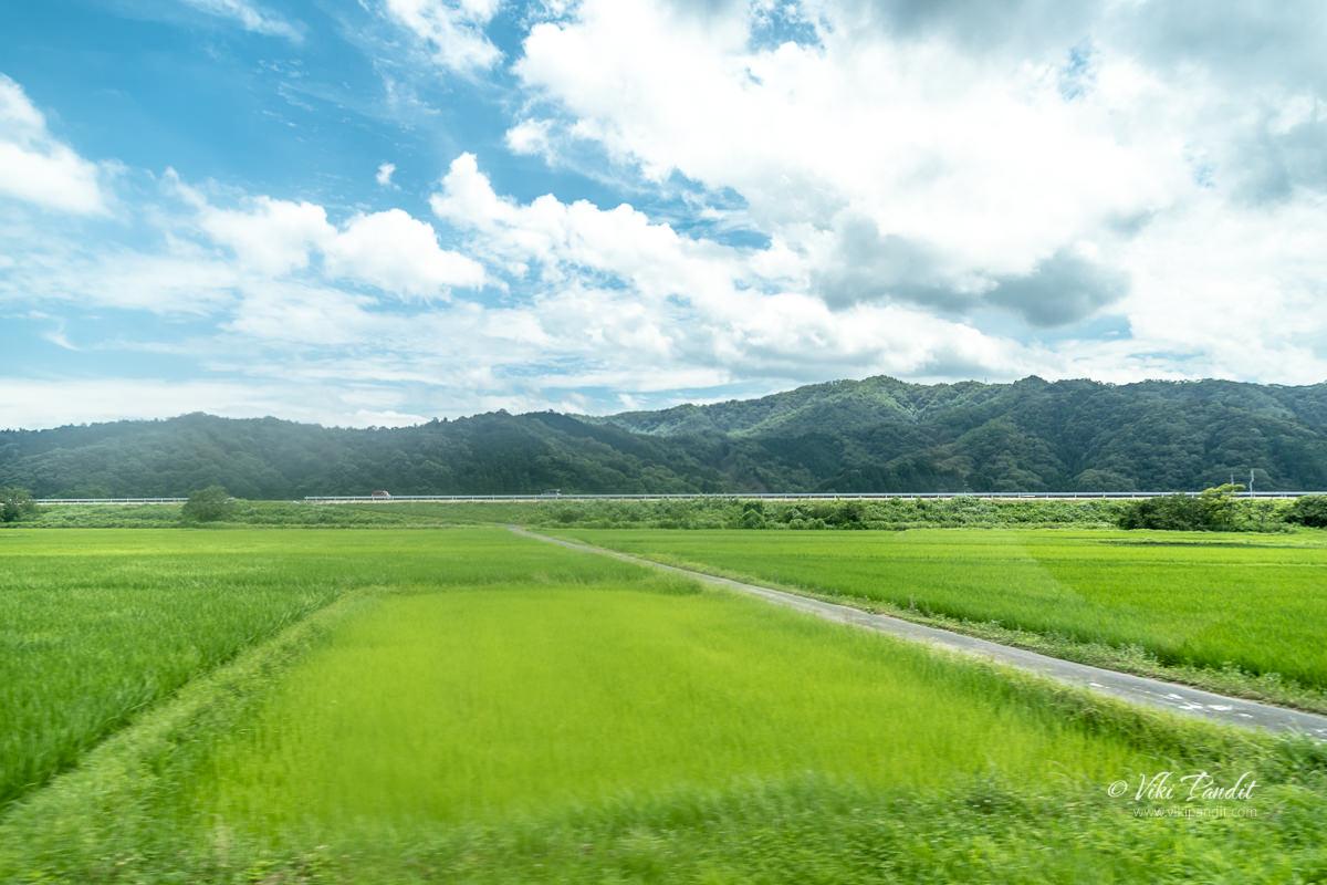 Yasugi countryside