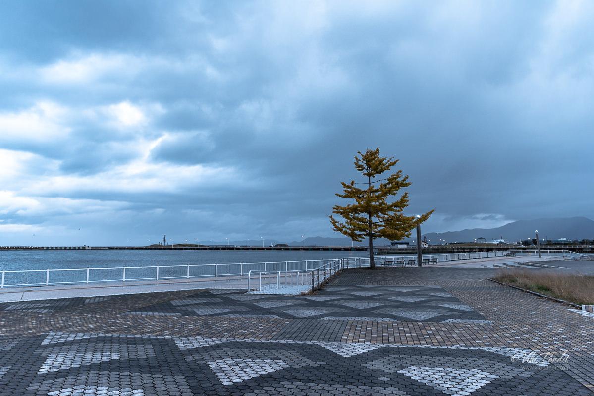 Aoiumi-Park-Aomori