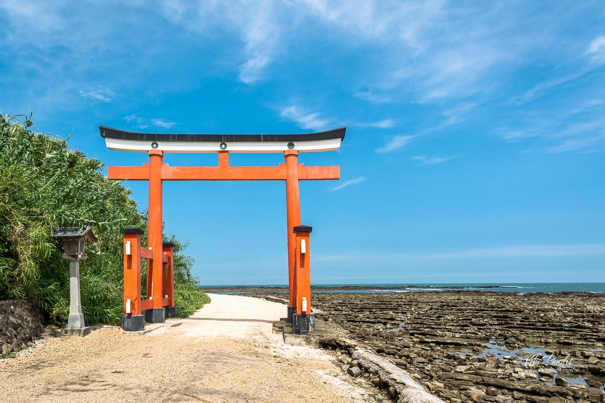 Aoshima Shrine Torii