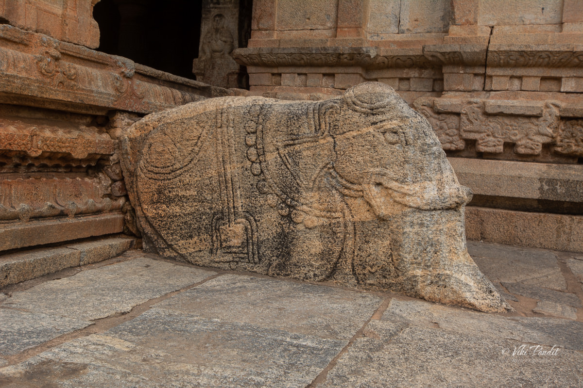 Elephant carved on the side of the stairs at Bhoga Nandishwara Temple