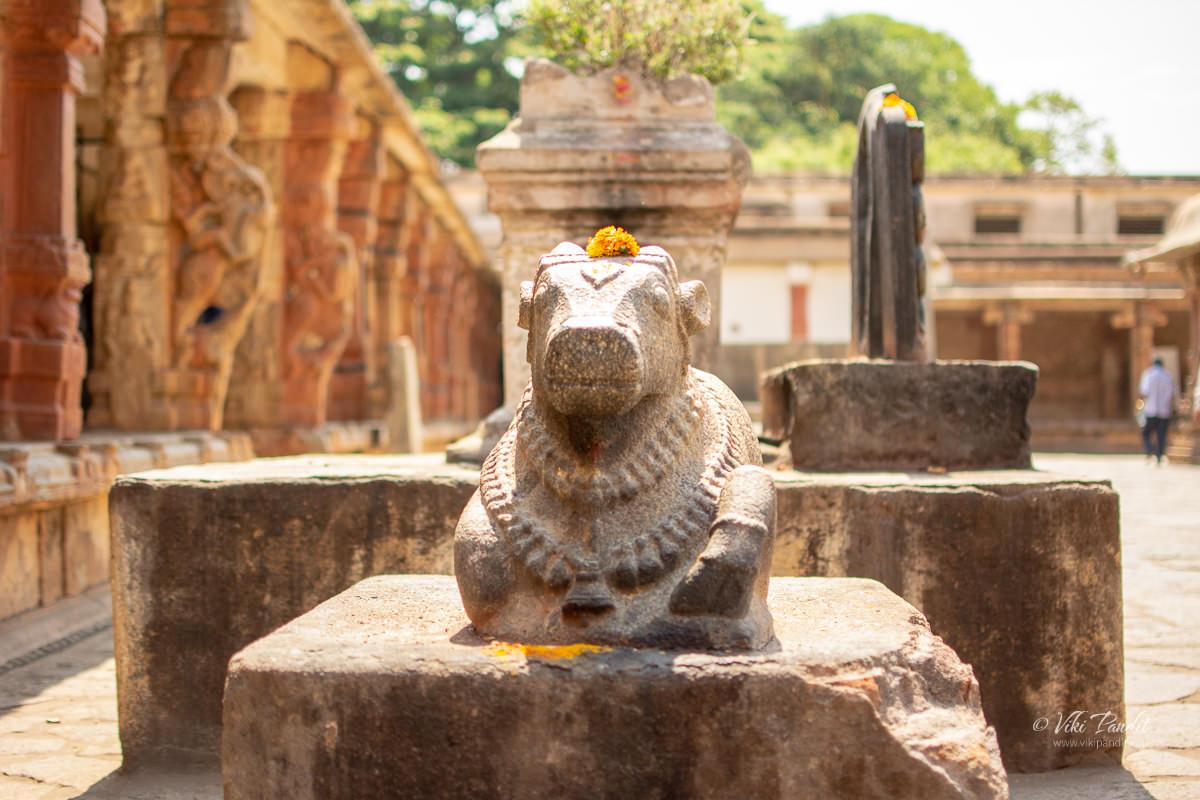 Stone carved Nandi Bull at Bhoga Nandishwara Temple