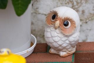 Owl-figurines-5