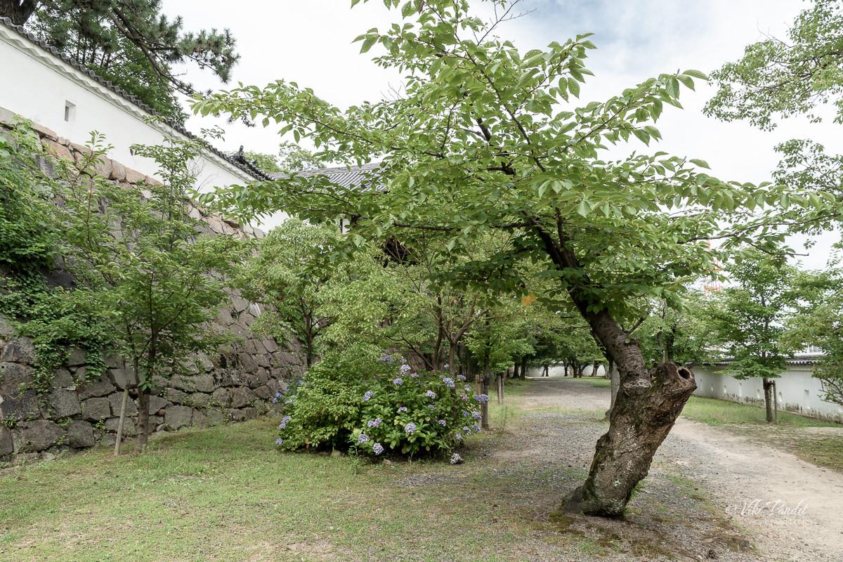 Fukuyama Castle Park