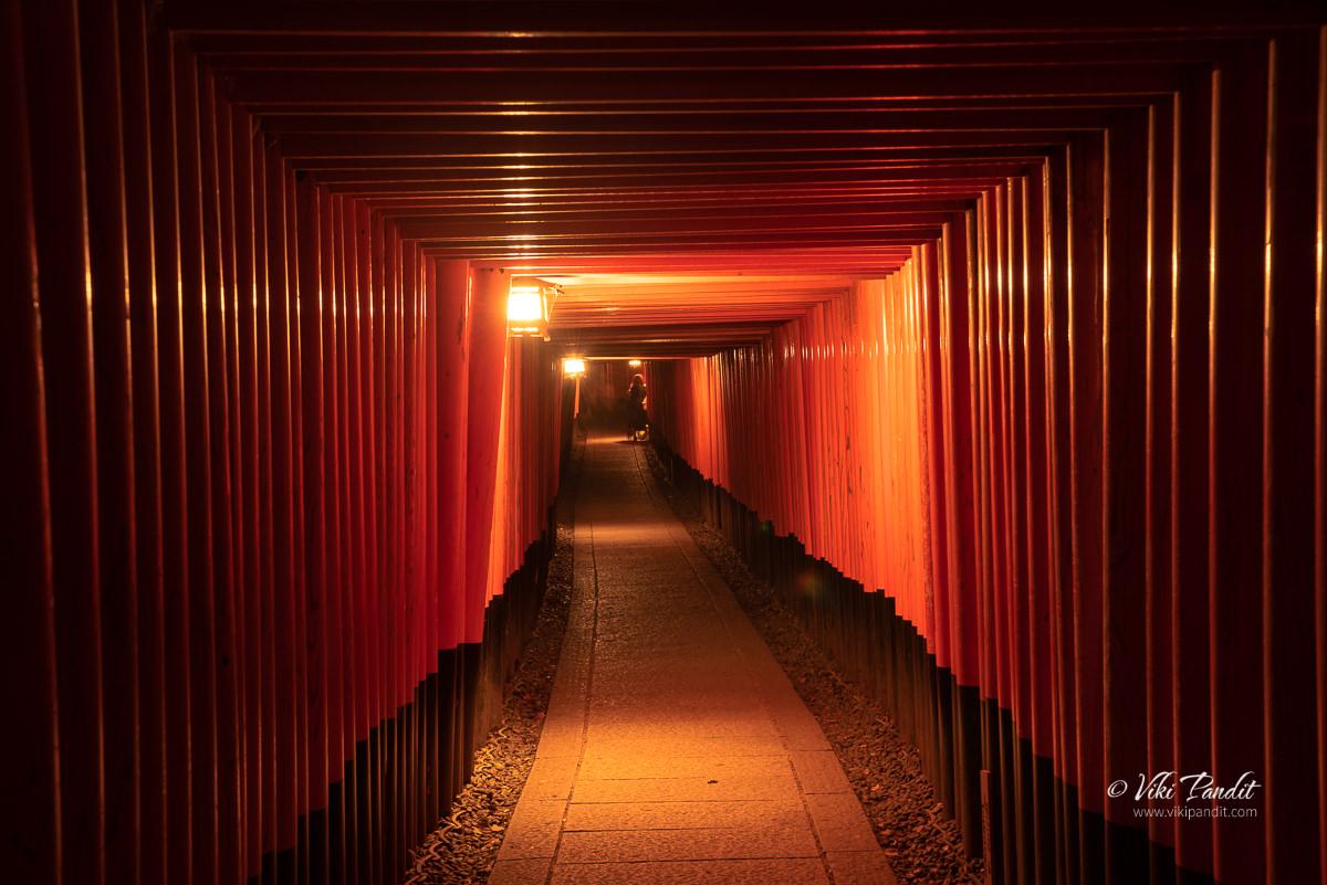 Torii gates at Inari Taisha Shrine