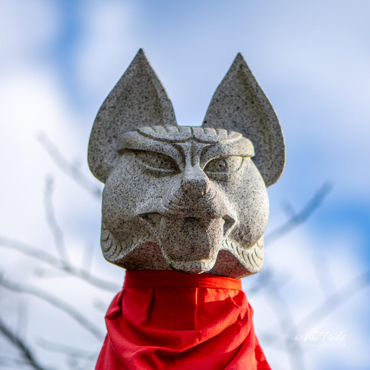Stone Fox idol