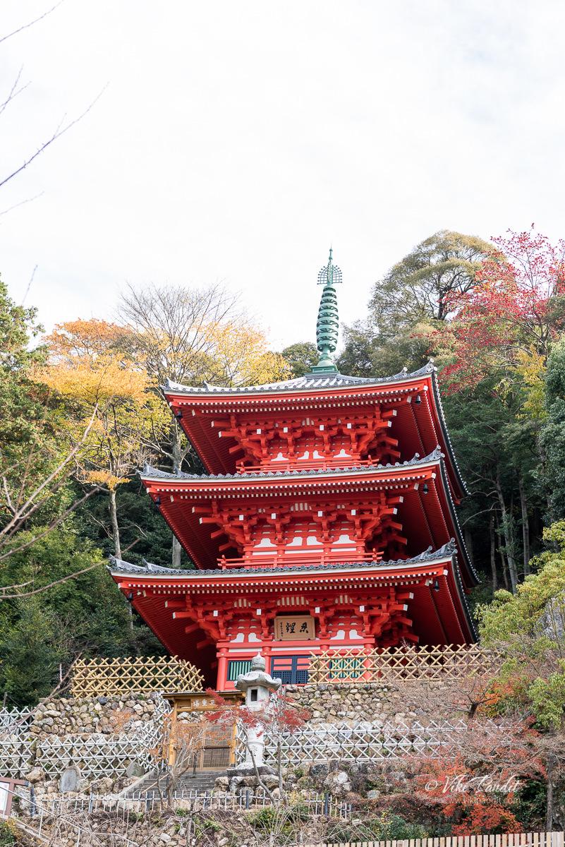 Pagoda at Gifu Park