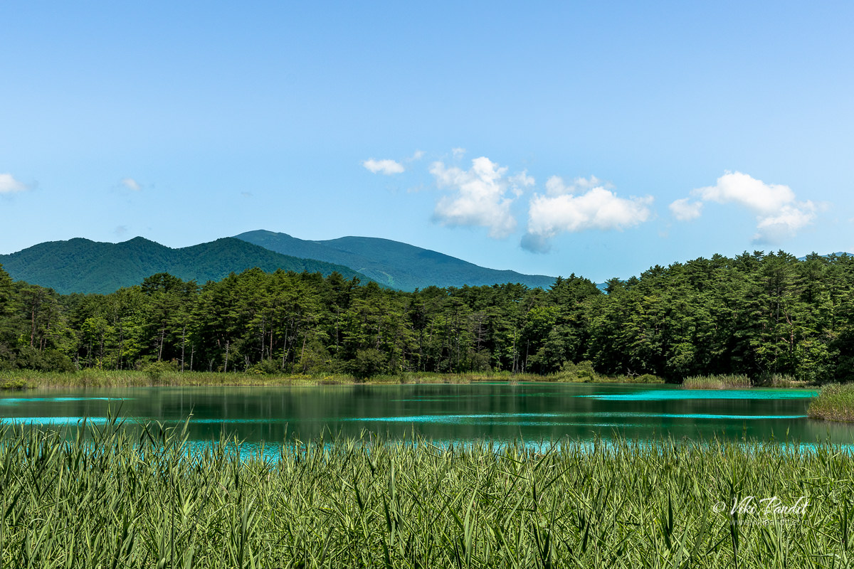 Benten-numa on the Goshiki-numa Nature Trail with Mt. Issaikyo and Mt. Azuma Kofuji in the background