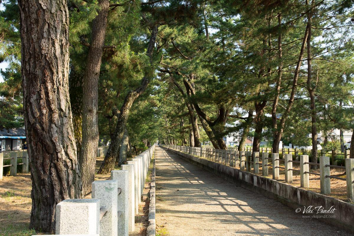 Path leading to Hōryū-ji Temple