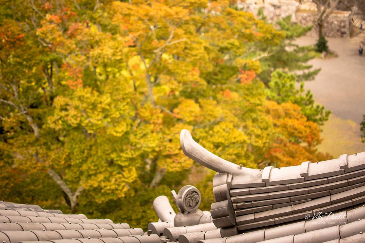 Fall foliage leaves at Iga Ueno Castle
