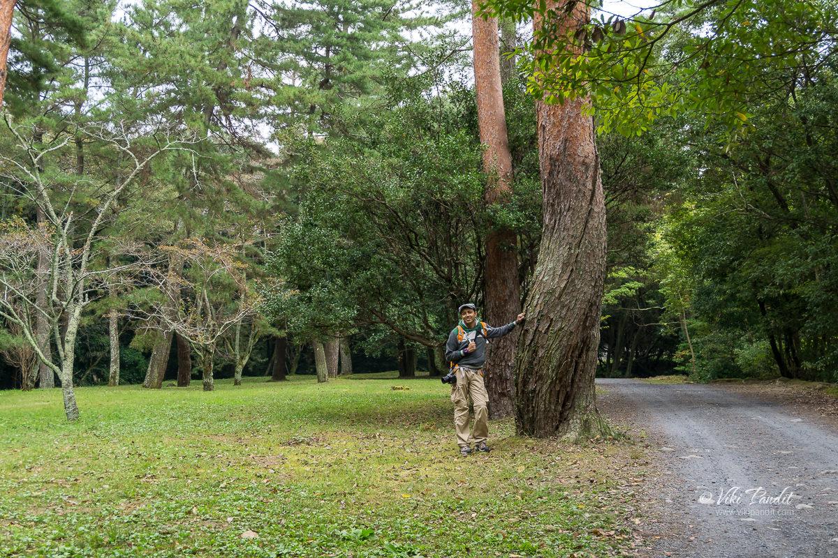 Viki at Iga Ueno Castle Grounds