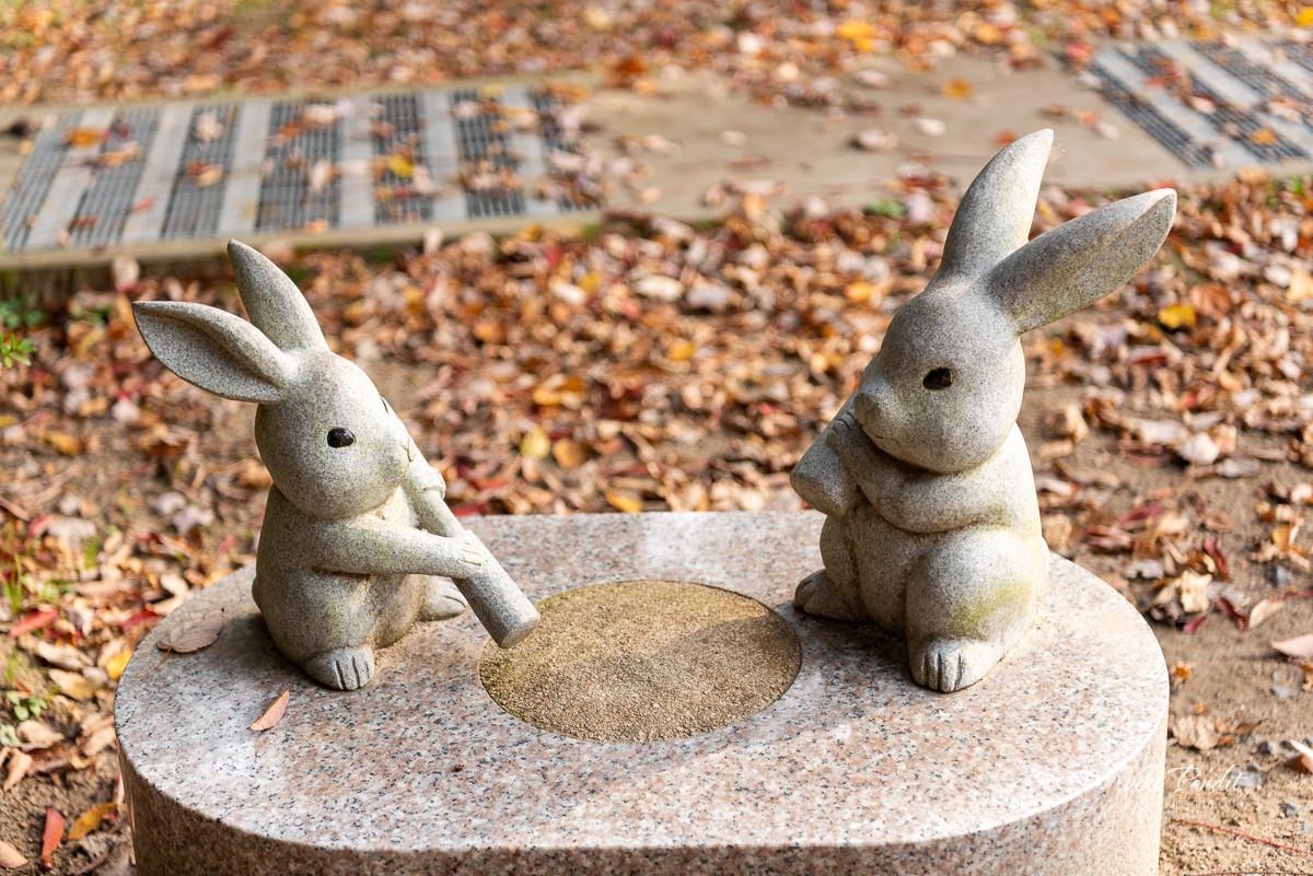 Inaba White Rabbit