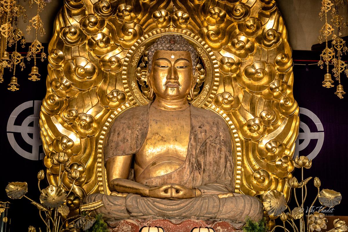 Golden Buddha inside Amida Hall at Hasedera
