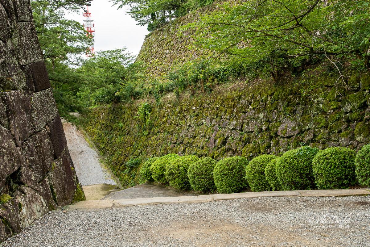 Walls of Kochi Castle