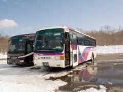 White Pirika Akan Bus