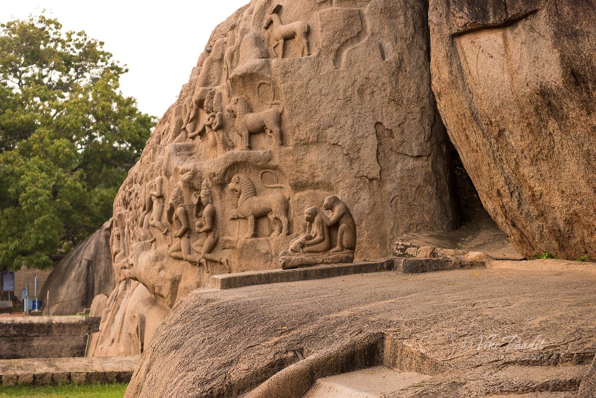 Monkey sculpture at Mahabalipuram