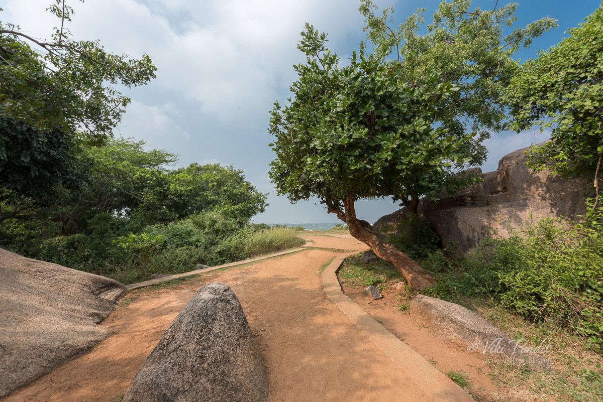 Mahabalipuram Hill