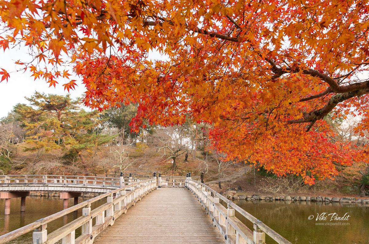 Bridge to Ukimido Pavilion
