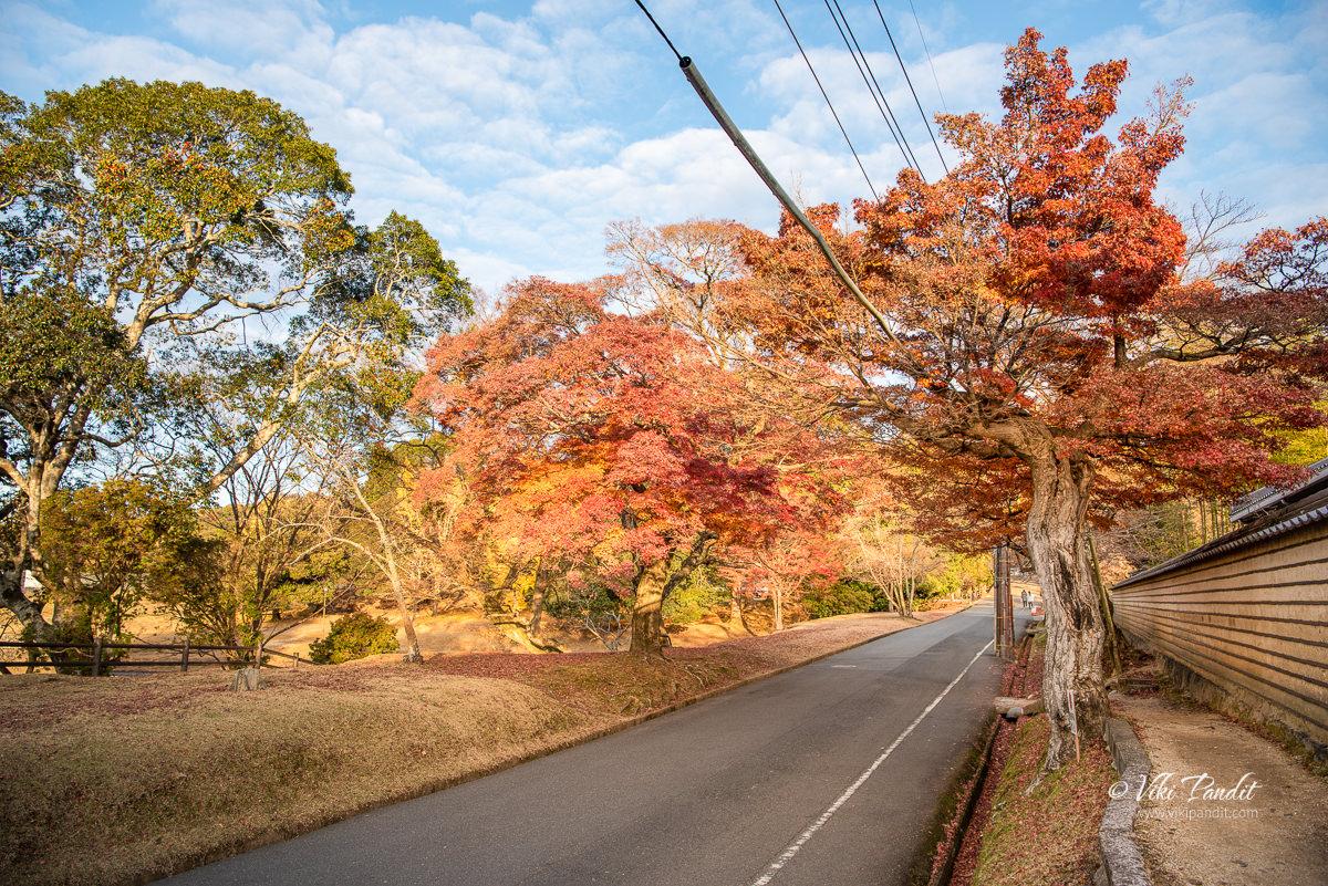 Enroute to Nara Park