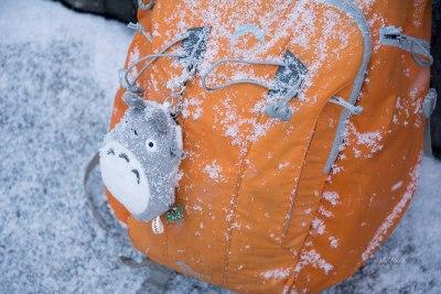 lowerpro-in-snow