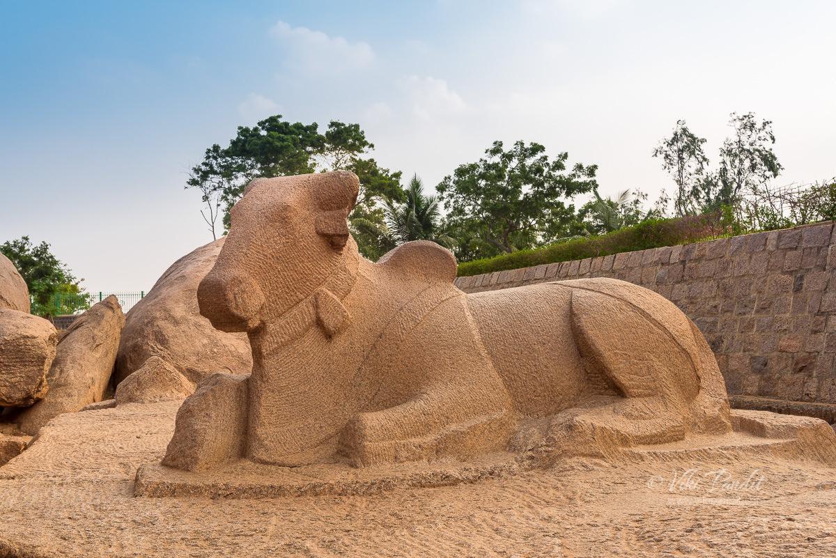 Monolithic Nandi Bull