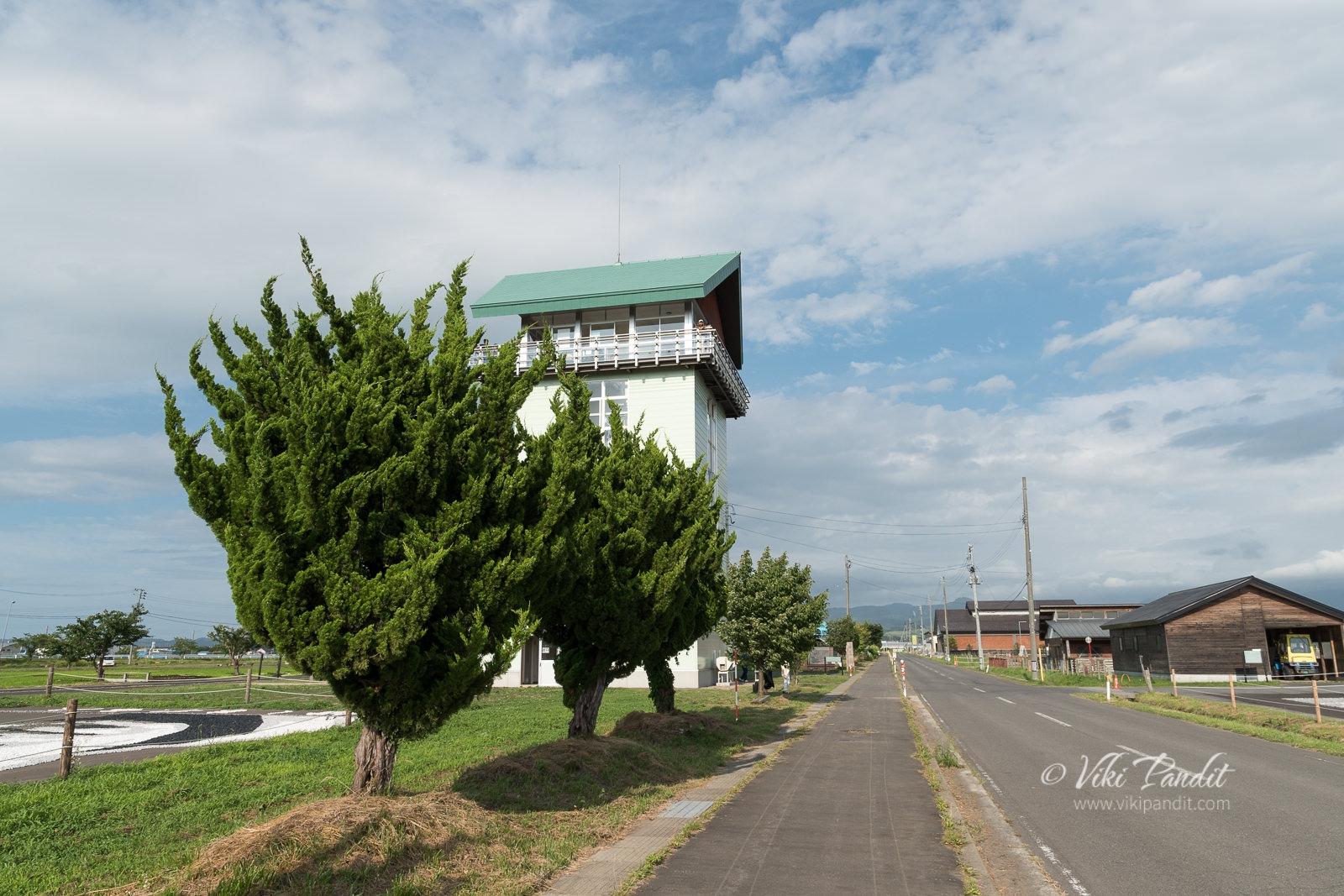Yayoi-no-Sato-Observation-platform