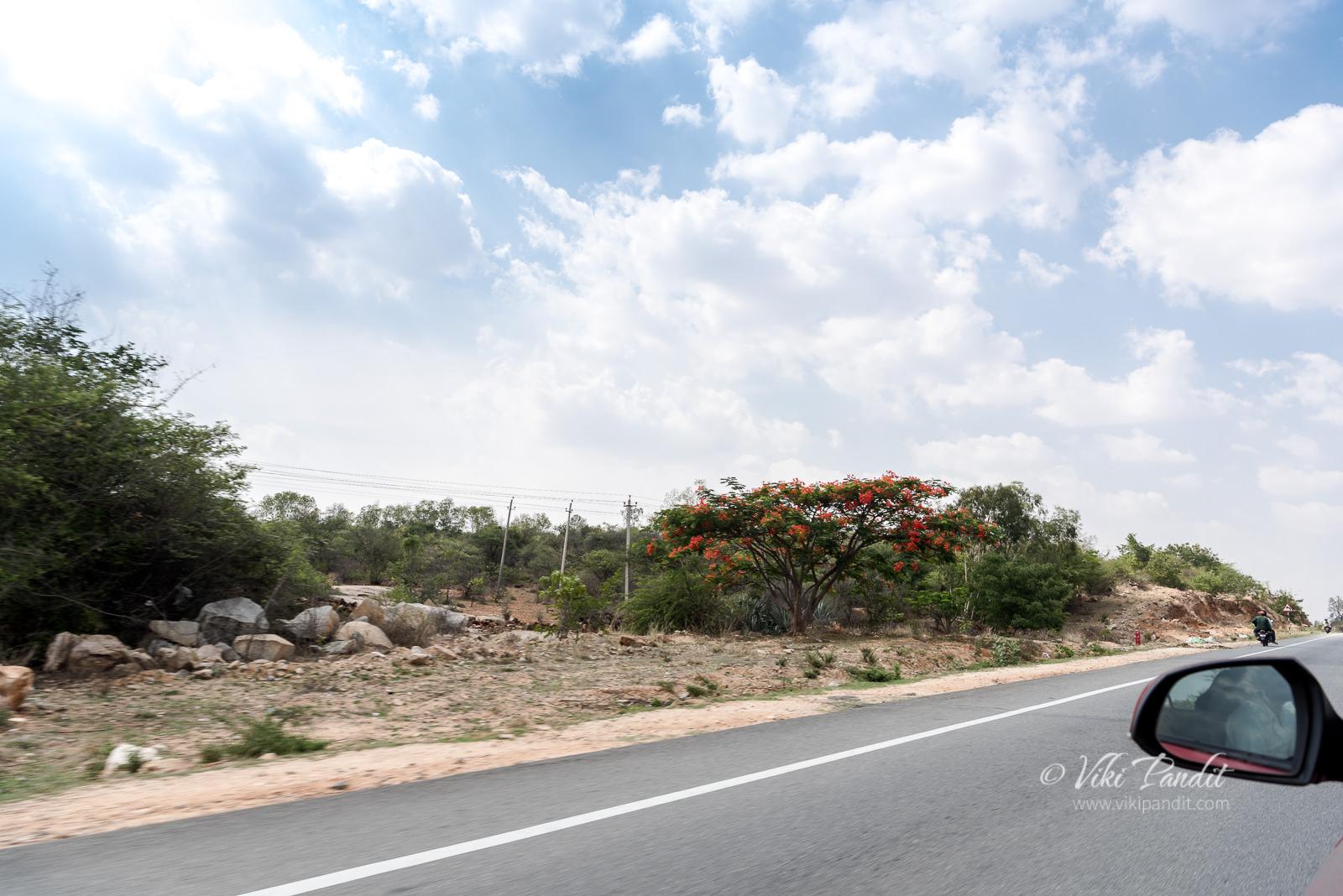 Bangalore to Lepakshi