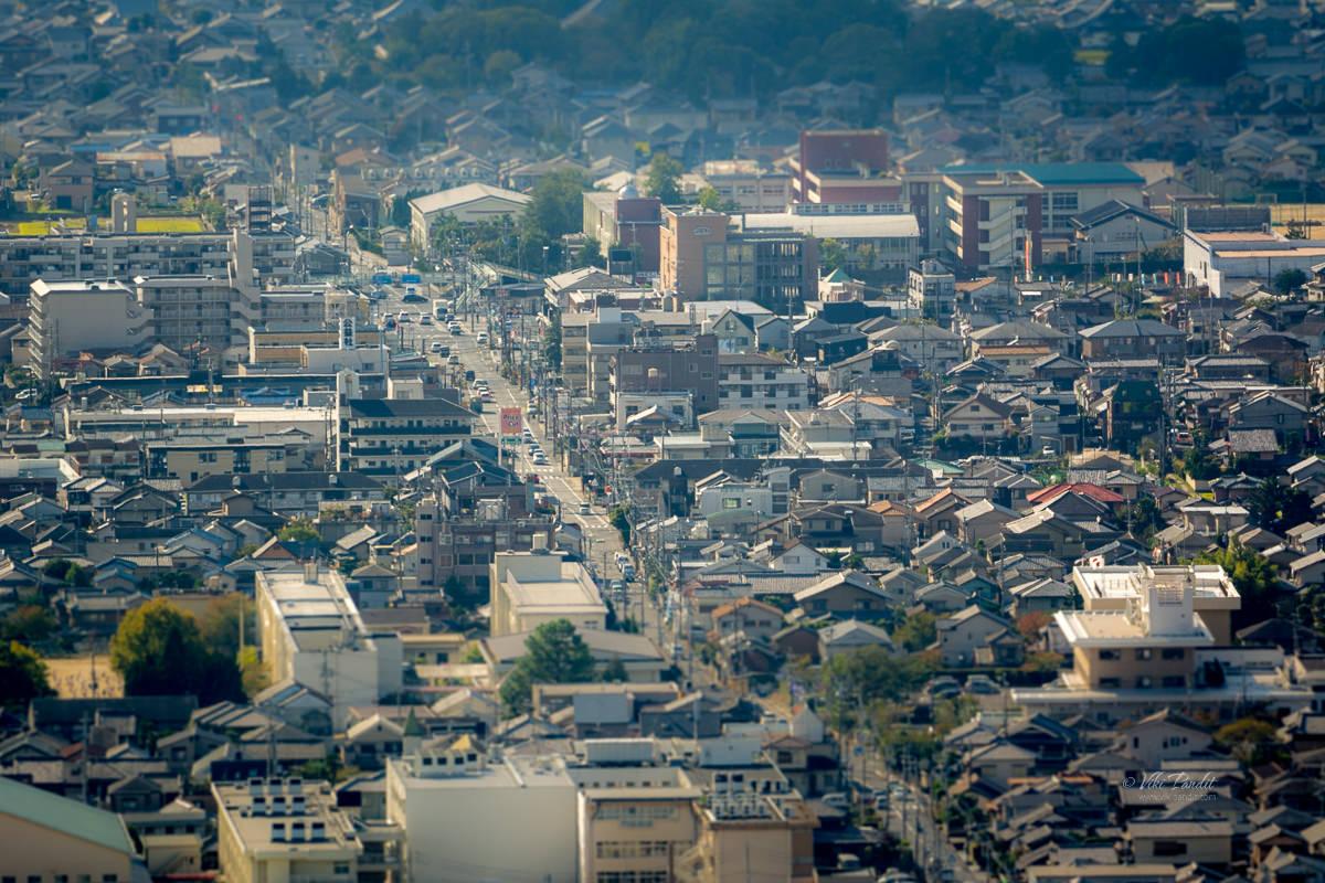 Nara Cityscape from Wakakusayama