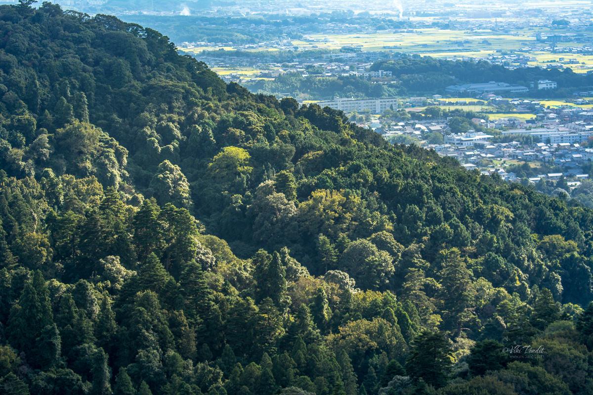Slopes of Mt. Wakakusa