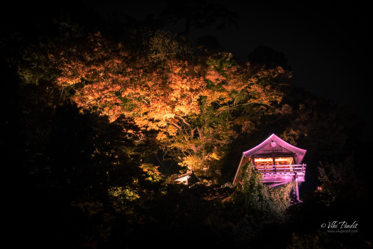 Illuminated Nokyodo  Hall at Night