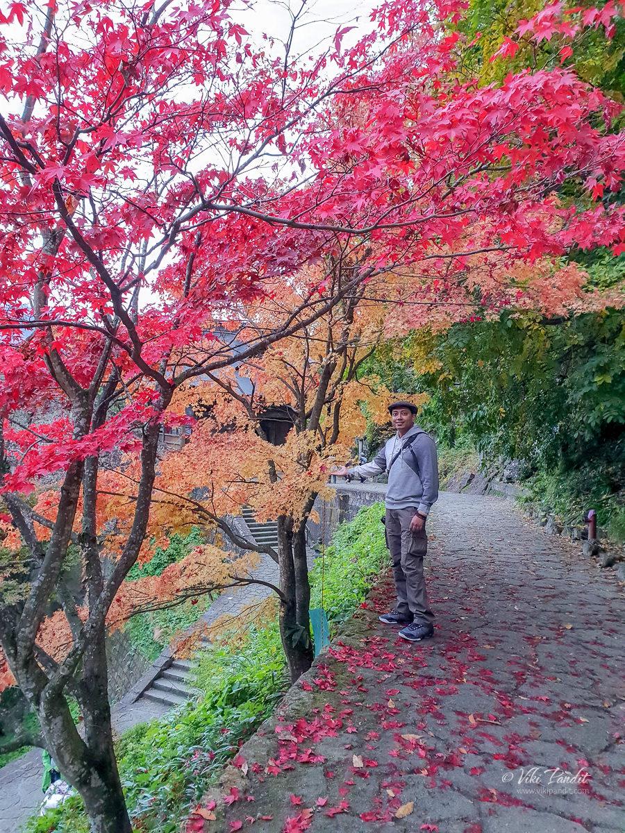 Viki Pandit with Fall trees at Yamadera