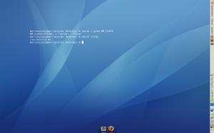 screenshot tilda ubuntu