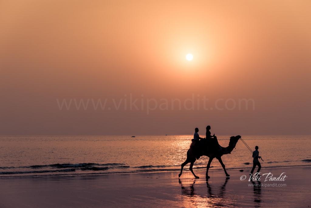 A stroll on Mandvi Beach